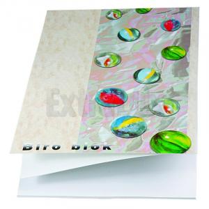 BLOK STENOGRAM A4 50L BREZČRTNI ART.740151